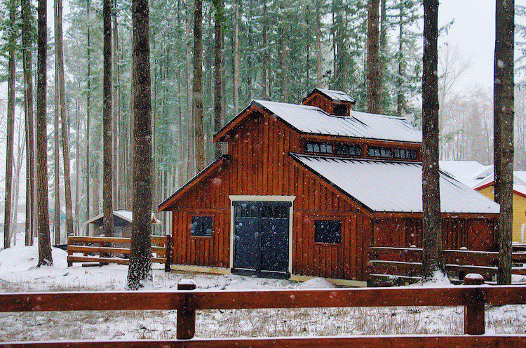 barn shed winter snow fall trees fence