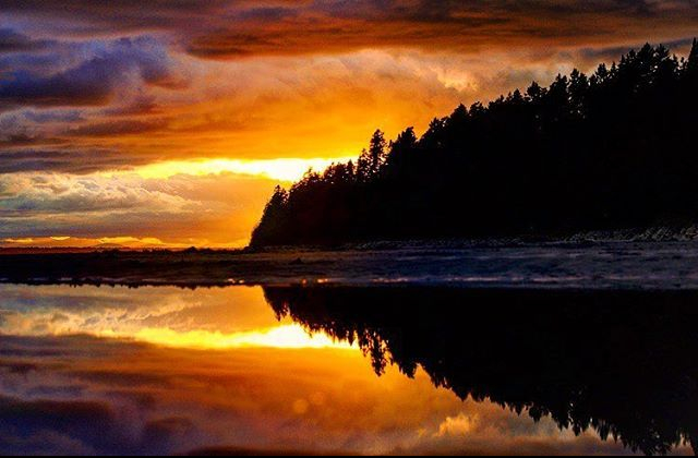 beach photo photography photographer reflection sunset trees silhouettes puddle clouds Whiterock White rock surrey