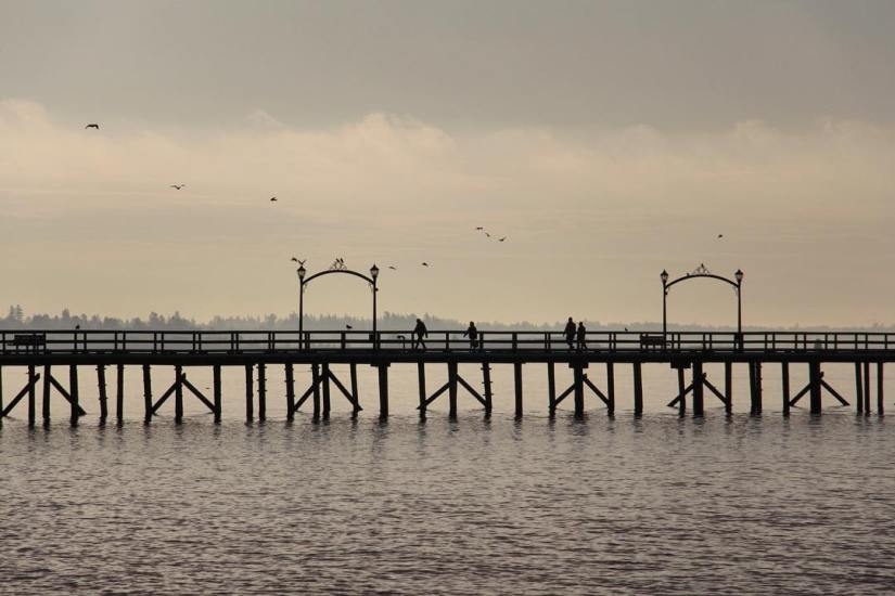 white-rock-surrey-photography-pier-silhouette-birds