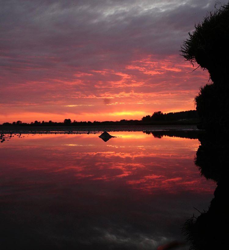 sunset-photography-photographer-surrey-mudbay-