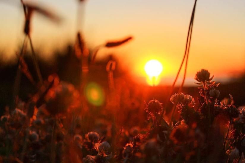bokeh-sunset-surrey-british-columbia-canada-
